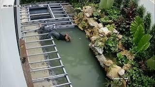 Tai nạn bị điện giật - ngã rơi xuống nước
