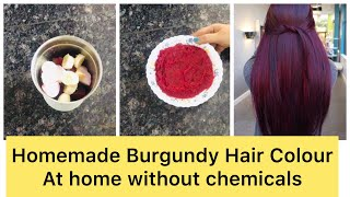 DIY 100% Natural Homemade Hair Colour without Heena(No chemicals)| Burgundy Colour| Manisha Pranay