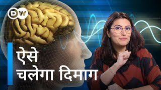Which is the best superfood for brain? (Isha Bhatia Sanan) Video HD