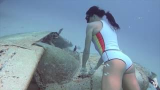 Julia Wheeler freediving
