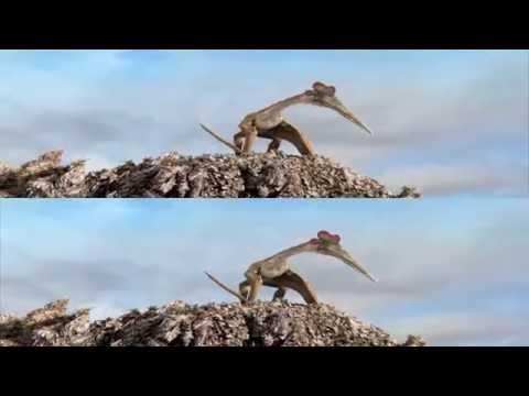 Крылатые монстры c Дэвидом Аттенборо 3D. FullHD (Вертикальная анаморфная стереопара)