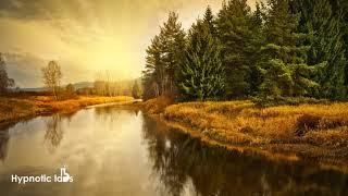 Uplifting Meditation Music 432 hz One Hour (Creek Nature Sounds)