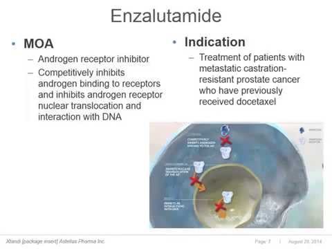 A Journal Article Review  Enzalutamide in Metastatic Prostate Cancer before Chemotherapy