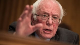 Sanders on Trump: 'This guy's a faud'