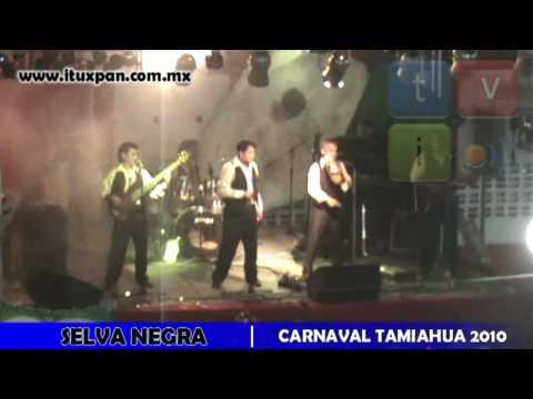 Selva Negra - Carnaval Tamiahua 2010 p3