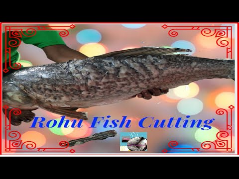 Fastest Rohu Fish Cutting Technique