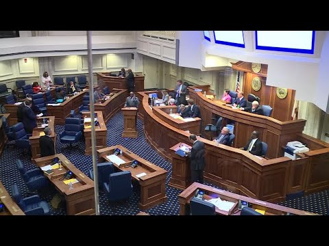 Alabama senator sounds off after vote against rape/incest exception for abortion ban