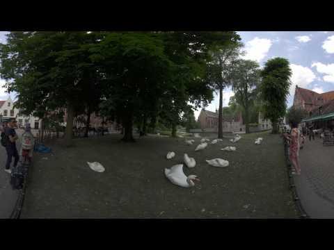 Z CAM V1 Pro - Cinematic VR Camer sample @ZCamS1 PRO