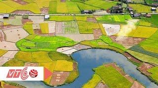 Ảnh Việt Nam lộng lẫy trên trang mạng Châu Âu | VTC