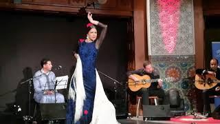Hamid Ajbar - Hamid Ajbar - Aire Andalusi Flamenco