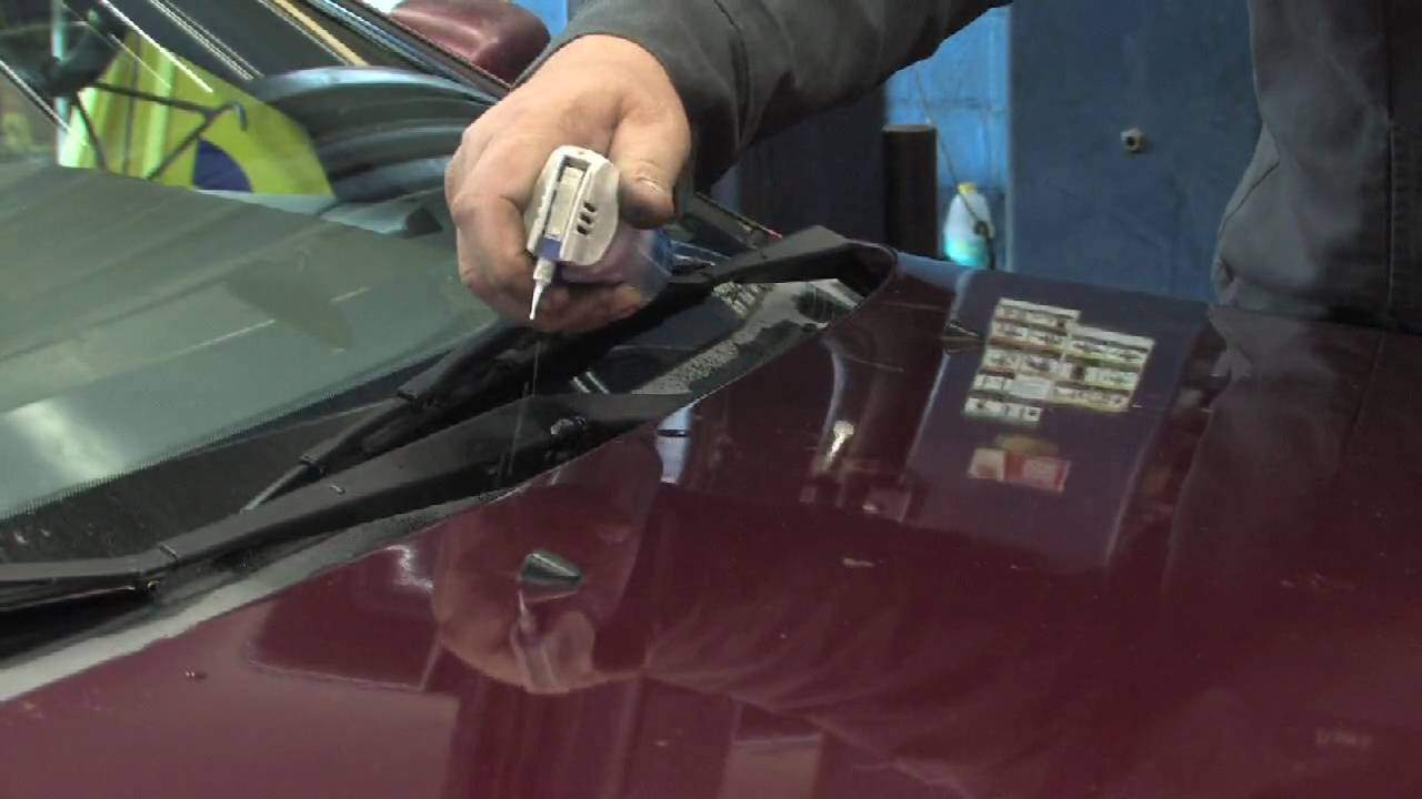 Car Maintenance How To Get Rid Of Mildew Smell In A Car