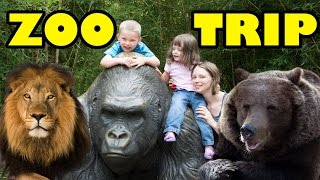 Zoo Animals - Cute Animals - Funny Animals - An Amazing Zoo Trip