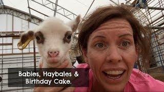 Baling Hay.       Vlog 30
