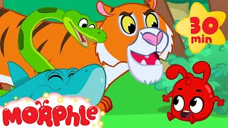 /morphle and the scary animal bandits snake tiger shark lion and dinosaur videos for kids