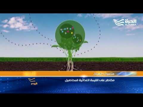 التغييرات المناخية تحد من القيمة الغذائية للنباتات