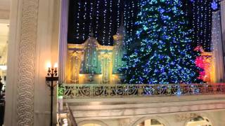 Macy's Christmas Light Show in Philadelphia