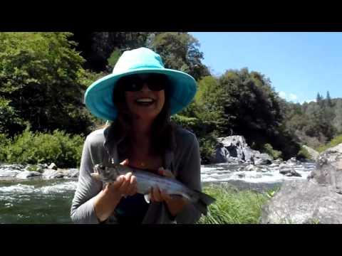 Upper Sacramento Trout California for beginners