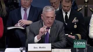 Mattis on Russian Mercenaries in Syria: I Ordered Their Annihilation