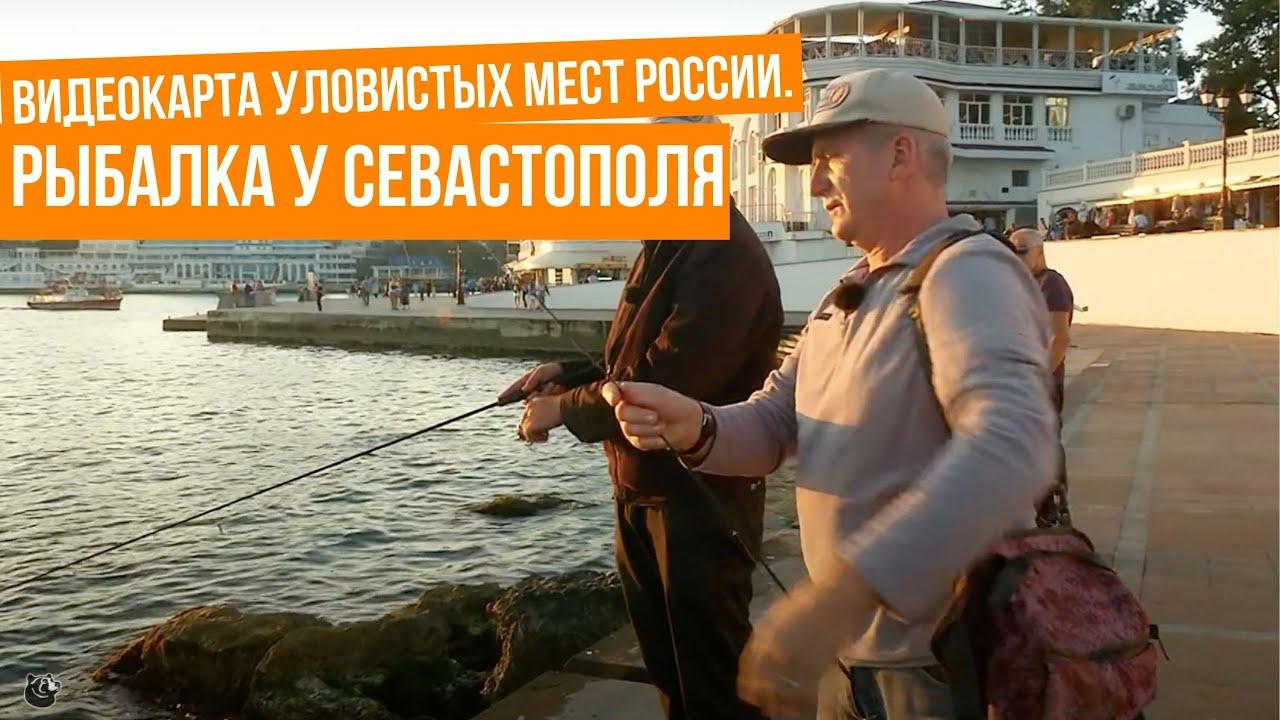 Рыбалка в севастополе и россии