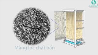 Công nghệ Bio nano làm sạch sông Tô Lịch hoạt động như thế nào