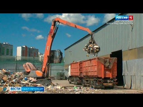 В Петербурге изучают морфологический состав бытовых отходов
