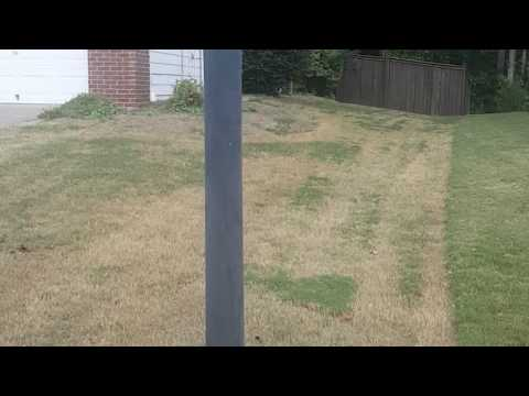 The Right and Wrong Way to Mow Your Lawn