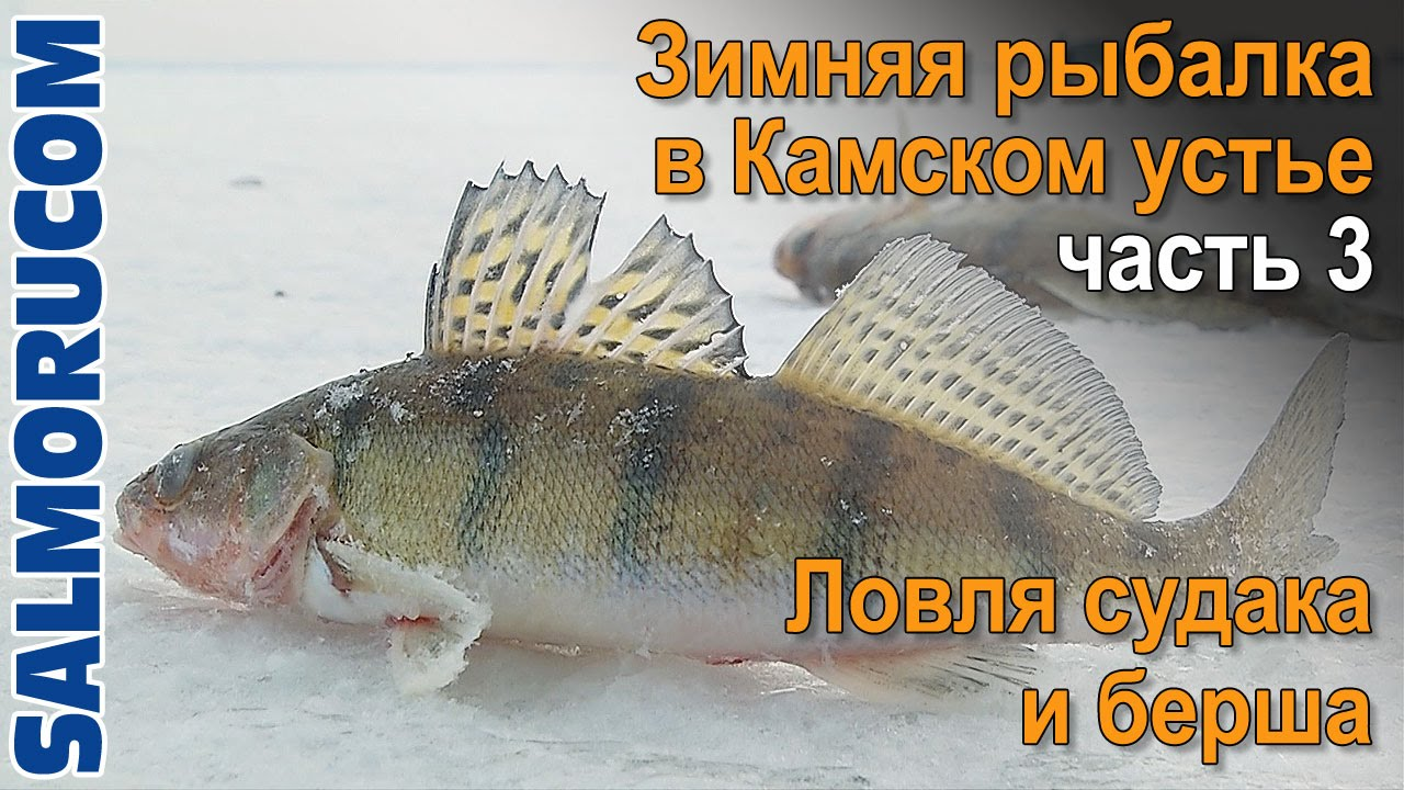 Зимняя рыбалка на камском устье