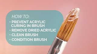 Keeping Your Acrylic Brush In Top Shape - Suzie's Pro Tips