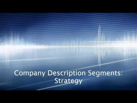 Company Description Segments: Strategy