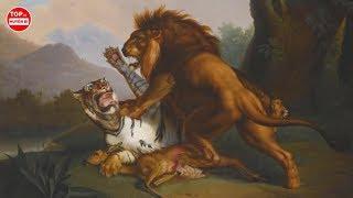 Trận Chiến Có 1 0 2 Giữa Hổ Và Sử Và Cái Kết Khiến Hàng Triệu Người Chia Sẻ | Top 10 Huyền Bí