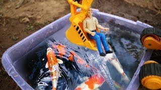 Excavator Dump truck Toys meet real fish feeding action