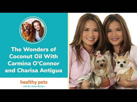 The Wonders of Coconut Oil With Carmina O'Connor and Charisa Antigua