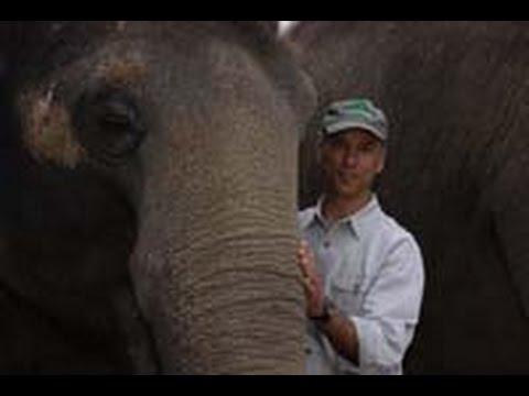Thane Maynard, Rethinking the Zoo