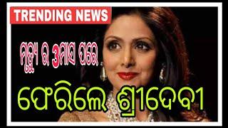 ମୃତ୍ୟୁ ପରେ ବି 3ମାସ ପରେ ଫେରିଲେ ଶ୍ରୀଦେବୀ,trending news,Sridevi is back after 3 months of her death,