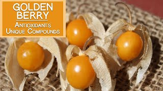 Golden Berry, High in Antioxidants and Unique Plant Compounds