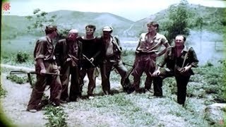 Best Vietnam Movies   Lives of the jungle   War Movies - Full Length English Subtitles