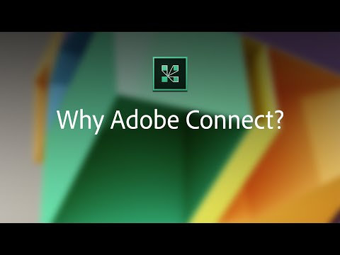 video Adobe Connect