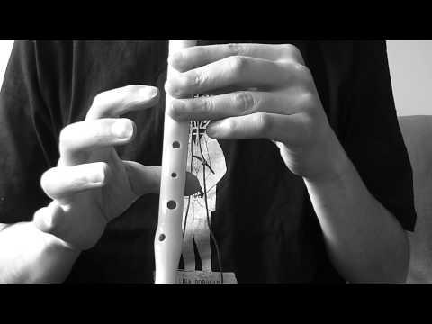 Caballito blanco - Flauta dulce (Star College, Osorno)