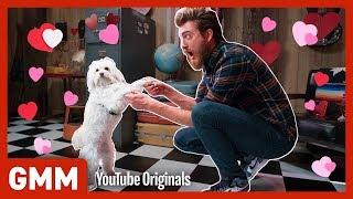 Valentine's Day Dog Dance-Off