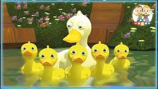 Five Little Ducks | Nursery Rhymes for kids - YouTube