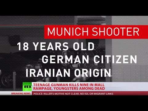 Munich attack not connected to refugees or ISIS, was inspired by Breivik - German police