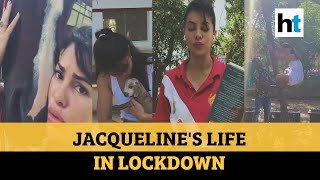 'My little film': Jacqueline's video of life in lockdown a..