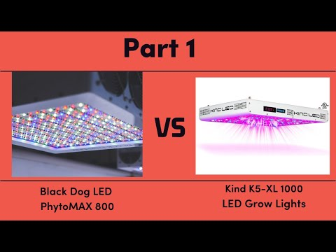 Black Dog LED PhytoMAX 800 vs. Kind K5-XL1000 LED Grow Lights - Part 1