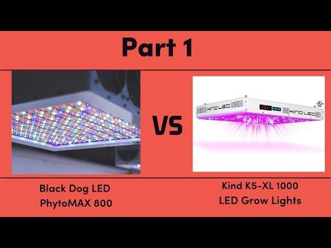 Black Dog LED PhytoMAX 800 vs. Kind K5-XL1000 LED Grow Lights - Part 1