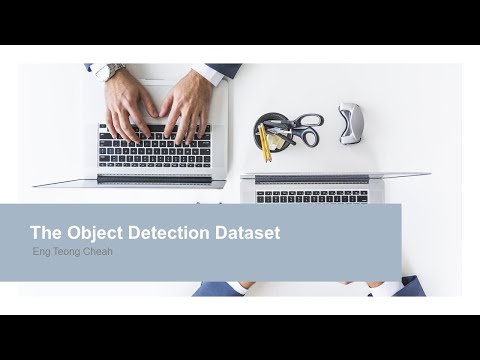 Computer Vision: The Object Detection Dataset
