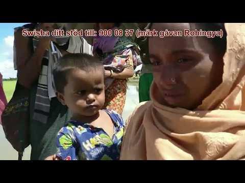 Rohingyakrisen - Läget fortsatt akut