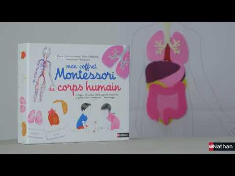 Vidéo de Maria Montessori
