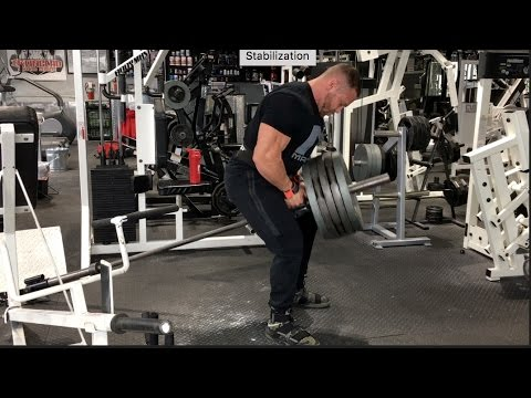 Back Workout With The Probliners with Exercise Descriptions and Tutorial