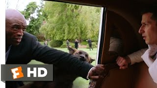 Popstar (2016) - Wolves Attack Seal Scene (8/10) | Movieclips