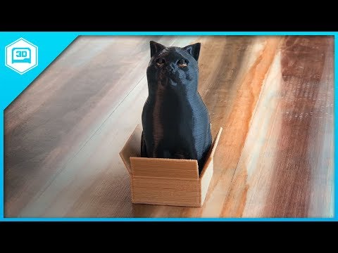 Cat in a Box (Multi Color) - Time-lapse